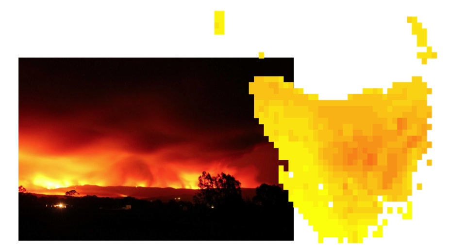 Bushfires image